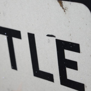 cattle_sign_detail